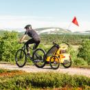 Детская коляска мультиспортивный прицеп Thule Chariot Sport 1 Spectra Yellow